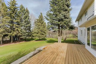 Photo 29: 22910 122 Avenue in Edmonton: Zone 59 House for sale : MLS®# E4175669