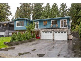 Photo 1: 19673 116B Avenue in Pitt Meadows: South Meadows House for sale : MLS®# R2412129