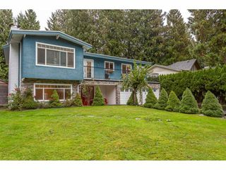 Photo 2: 19673 116B Avenue in Pitt Meadows: South Meadows House for sale : MLS®# R2412129