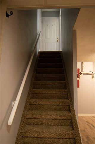 Photo 21: 1015 41 Street in Edmonton: Zone 29 House for sale : MLS®# E4192627