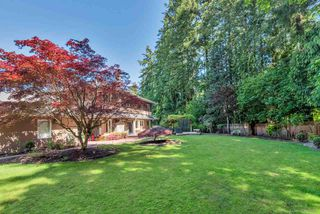 Photo 24: 13212 22B Avenue in Surrey: Elgin Chantrell House for sale (South Surrey White Rock)  : MLS®# R2508485