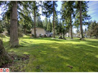 Photo 10: 2880 HELC Place in Surrey: Grandview Surrey House for sale (South Surrey White Rock)  : MLS®# F1107113