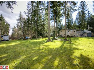 Photo 9: 2880 HELC Place in Surrey: Grandview Surrey House for sale (South Surrey White Rock)  : MLS®# F1107113