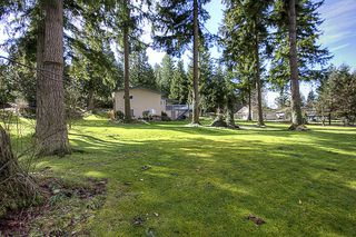 Photo 5: 2880 HELC Place in Surrey: Grandview Surrey House for sale (South Surrey White Rock)  : MLS®# F1107113