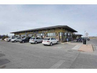 Photo 15: 4211 4975 130 Avenue SE in CALGARY: McKenzie Towne Condo for sale (Calgary)  : MLS®# C3588658