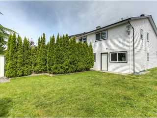 Photo 16: 20362 DALE Drive in Maple Ridge: Southwest Maple Ridge House for sale : MLS®# V1070411