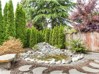 Photo 17: 20362 DALE Drive in Maple Ridge: Southwest Maple Ridge House for sale : MLS®# V1070411
