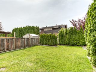 Photo 15: 20362 DALE Drive in Maple Ridge: Southwest Maple Ridge House for sale : MLS®# V1070411