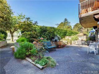 Photo 18: 204 1246 Fairfield Rd in VICTORIA: Vi Fairfield West Condo for sale (Victoria)  : MLS®# 740928