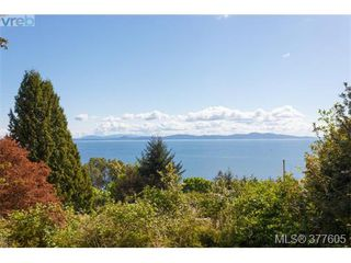 Photo 5: 923 Claremont Ave in VICTORIA: SE Cordova Bay Single Family Detached for sale (Saanich East)  : MLS®# 758129