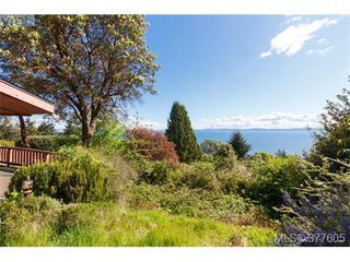 Photo 4: 923 Claremont Ave in VICTORIA: SE Cordova Bay Single Family Detached for sale (Saanich East)  : MLS®# 758129