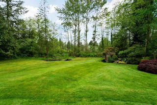 "Photo 38: 4733 SADDLEHORN Crescent in Langley: Salmon River House for sale in ""SALMON RIVER"" : MLS®# R2172074"