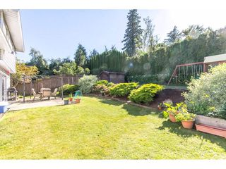 Photo 20: 35281 MARSHALL Road in Abbotsford: Abbotsford East House for sale : MLS®# R2184701