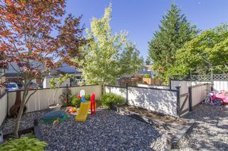 "Photo 14: 24394 102 Avenue in Maple Ridge: Albion House for sale in ""Country Lane"" : MLS®# R2206393"