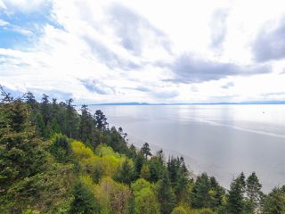 Photo 19: 637 ENGLISH BLUFF Road in Delta: English Bluff House for sale (Tsawwassen)  : MLS®# R2234551