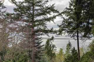 Photo 16: 637 ENGLISH BLUFF Road in Delta: English Bluff House for sale (Tsawwassen)  : MLS®# R2234551