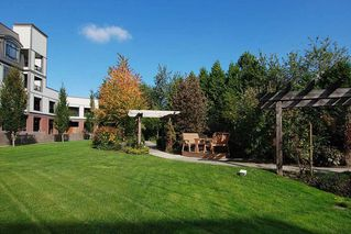 """Photo 18: 309 8880 202 Street in Langley: Walnut Grove Condo for sale in """"The Residence"""" : MLS®# R2247725"""