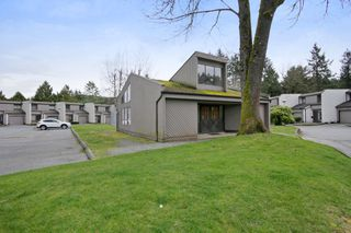 "Photo 20: 113 3455 WRIGHT Street in Abbotsford: Matsqui Townhouse for sale in ""Laburbum Mews"" : MLS®# R2251975"