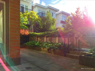 Photo 13: 120 9500 ODLIN Road in Richmond: West Cambie Condo for sale : MLS®# R2276842