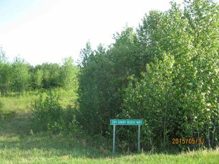 Photo 1: 204 Sandy Beach Way: Rural Two Hills County Rural Land/Vacant Lot for sale : MLS®# E4127263
