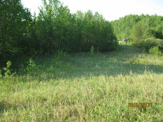 Photo 5: 204 Sandy Beach Way: Rural Two Hills County Rural Land/Vacant Lot for sale : MLS®# E4127263
