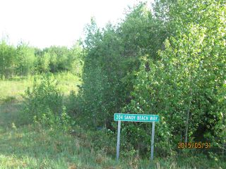 Photo 2: 204 Sandy Beach Way: Rural Two Hills County Rural Land/Vacant Lot for sale : MLS®# E4127263