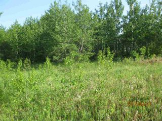 Photo 4: 204 Sandy Beach Way: Rural Two Hills County Rural Land/Vacant Lot for sale : MLS®# E4127263
