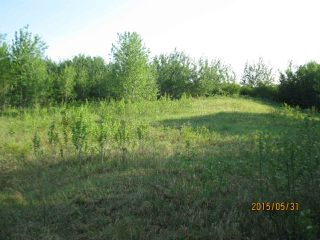 Photo 3: 204 Sandy Beach Way: Rural Two Hills County Rural Land/Vacant Lot for sale : MLS®# E4127263