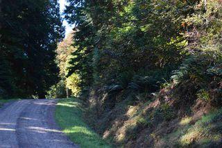 Photo 8: LOT 69 WEST BAY Road: Gambier Island Land for sale (Sunshine Coast)  : MLS®# R2313931