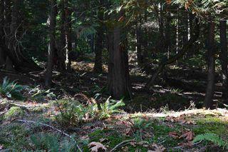 Photo 16: LOT 69 WEST BAY Road: Gambier Island Land for sale (Sunshine Coast)  : MLS®# R2313931