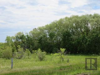 Photo 4: 0 Rockwood Drive in Teulon: RM of Rockwood Residential for sale (R19)  : MLS®# 1828421