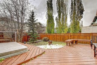 Photo 10: 217 TUSCANY MEADOWS Heights NW in Calgary: Tuscany Detached for sale : MLS®# C4213768