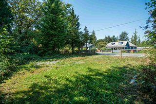 Photo 14: 21730 RIVER Road in Maple Ridge: West Central House for sale : MLS®# R2324308