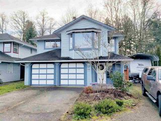 Main Photo: 21016 91A Avenue in Langley: Walnut Grove House for sale : MLS®# R2328461