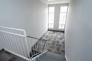 Photo 26:  in Edmonton: Zone 22 Condo for sale : MLS®# E4148837