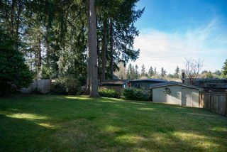 "Photo 18: 2023 HYANNIS Drive in North Vancouver: Blueridge NV House for sale in ""BLUERIDGE"" : MLS®# R2356994"