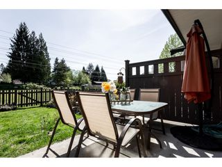 """Photo 18: 92 9525 204 Street in Langley: Walnut Grove Townhouse for sale in """"TIME"""" : MLS®# R2364816"""