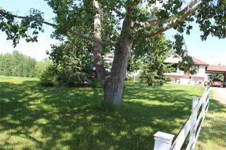 Photo 22: 53219 RGE RD 271: Rural Parkland County House for sale : MLS®# E4162811