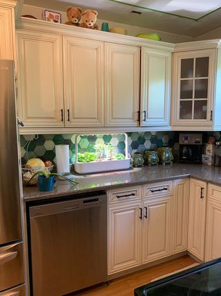 Photo 5: 10203 104 Street: Westlock House for sale : MLS®# E4167061
