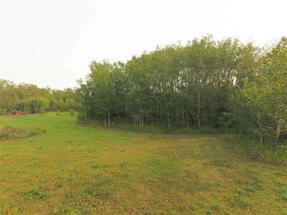 Photo 2: 50542 RGE RD 225: Rural Leduc County Rural Land/Vacant Lot for sale : MLS®# E4175820
