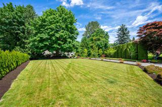 Photo 3: 35303 MCKEE Place in Abbotsford: Abbotsford East House for sale : MLS®# R2460227