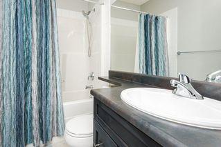 Photo 30: 417 2229 44 Avenue in Edmonton: Zone 30 Condo for sale : MLS®# E4201923