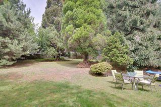 Photo 22: 1591 THOMAS Avenue in Coquitlam: Central Coquitlam House for sale : MLS®# R2484359