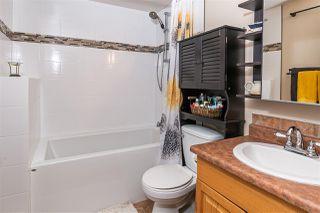 Photo 29: 4032 77 Street in Edmonton: Zone 29 House for sale : MLS®# E4218744
