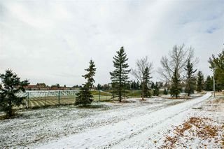 Photo 38: 4032 77 Street in Edmonton: Zone 29 House for sale : MLS®# E4218744