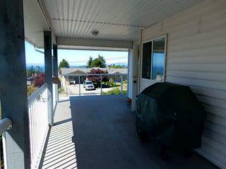Photo 11: 4936 ARBUTUS Road in Sechelt: Sechelt District House for sale (Sunshine Coast)  : MLS®# V1136165