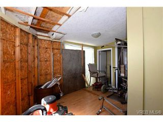 Photo 16: 3151 Esson Rd in VICTORIA: SW Portage Inlet Single Family Detached for sale (Saanich West)  : MLS®# 734196