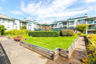 "Photo 20: 218 19528 FRASER Highway in Surrey: Cloverdale BC Condo for sale in ""Fairmont on the Boulevard"" (Cloverdale)  : MLS®# R2092680"