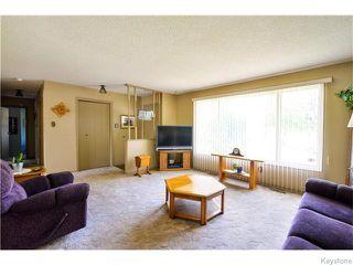 Photo 3: 246 Hazelwood Avenue in Winnipeg: Meadowood Residential for sale (2E)  : MLS®# 1623489