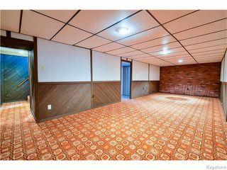 Photo 14: 246 Hazelwood Avenue in Winnipeg: Meadowood Residential for sale (2E)  : MLS®# 1623489